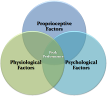 3 P's of human Performance